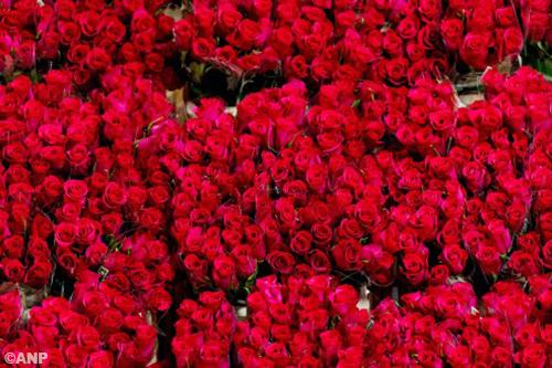 Valentijn op zondag remt bloemenverkoop