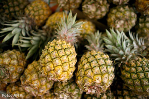 5.000 kilo cocaïne verstopt tussen lading ananassen