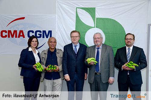 Antwerpse haven haalt nieuw bananencontract binnen