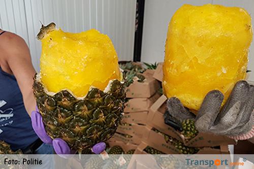 Politie vindt 68,5 kilo coke tussen de ananassen
