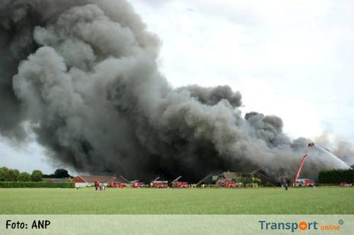 20.000 varkens slachtoffer van brand Erichem [+foto]