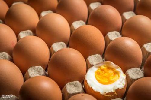 Oppositie België wil spoedberaad over eieren
