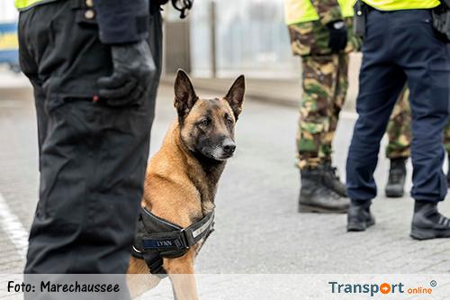 Marechaussee krijgt tien honden extra om migranten in vrachtwagens te vinden