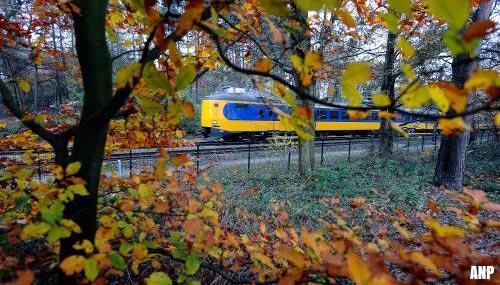 Weinig treinuitval door herfstweer