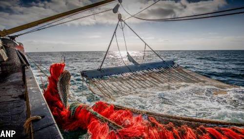 'Den Haag passeerde buitenland bij pulsvissen'