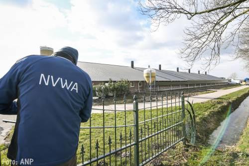 Slachthuis in vogelgriepgebied kan weer open