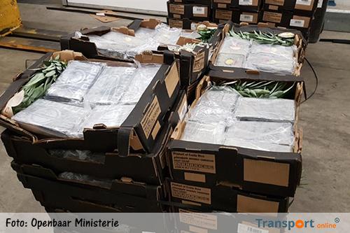 Ruim 500 kilo cocaïne aangetroffen in lading ananassen