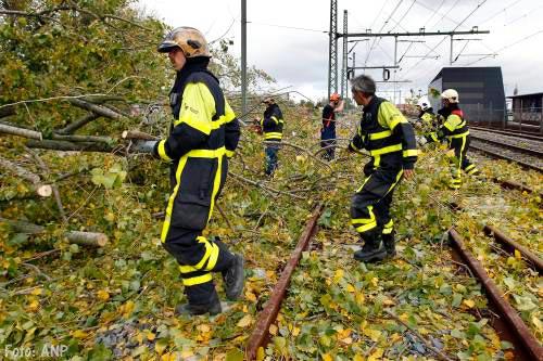 Bomen beter snoeien tegen treinstoringen
