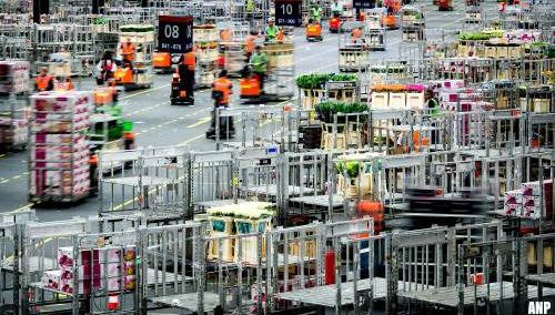 Bloemenexport: brexit kan roet in eten gooien