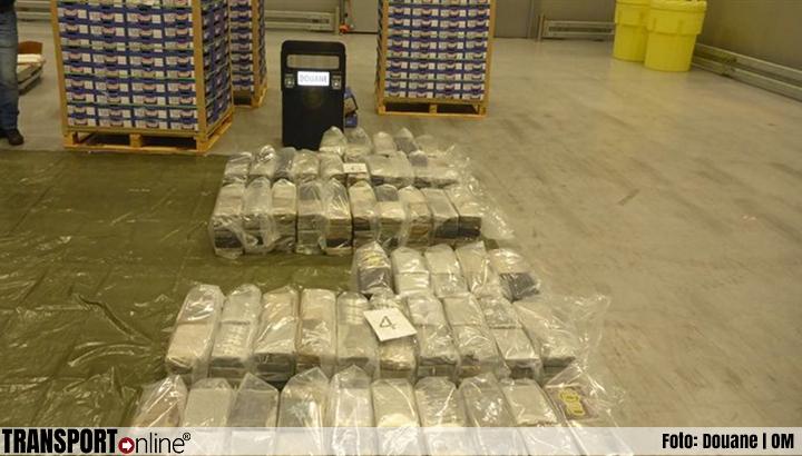 Douane ontdekt zaterdag 500 kilo cocaïne verstopt in lading mango's