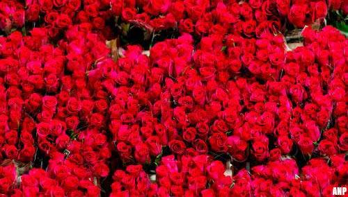 Planten- en bloemensector: drie keer drukker door Valentijn