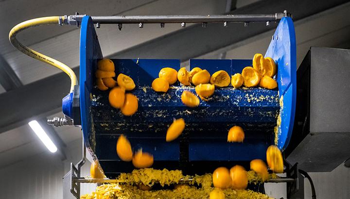 Jumbo geeft, samen met Renewi, miljoenen sinaasappelschillen tweede leven in schoonmaakmiddelen