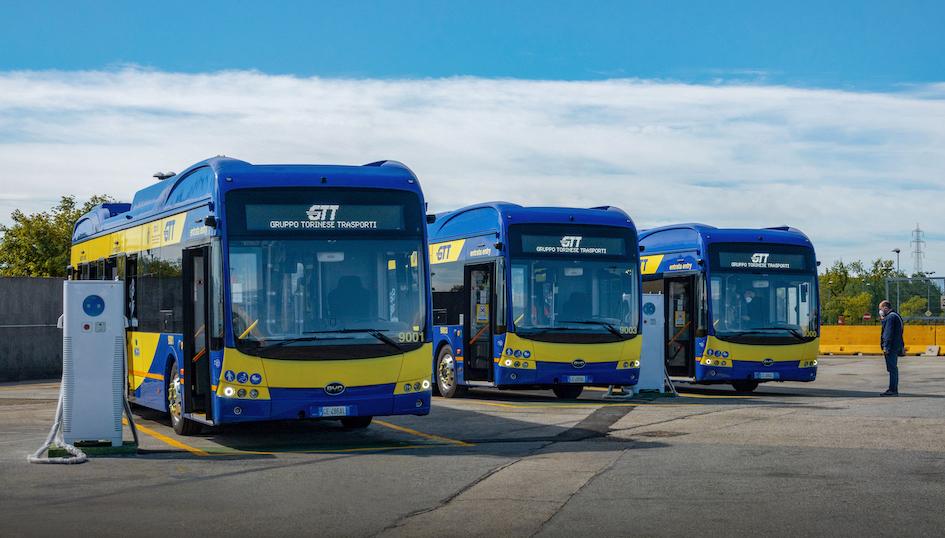 BYD krijgt grote order voor elektrische bussen in Turijn