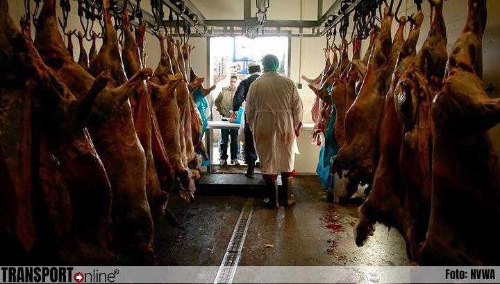 Strikt toezicht NVWA op dierenwelzijn en voedselveiligheid tijdens Offerfeest