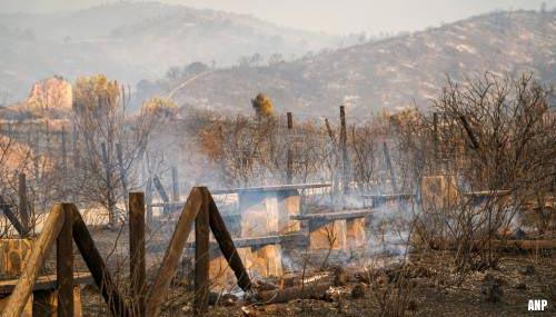 Vijfhonderd mensen geëvacueerd wegens bosbrand in Zuid-Spanje