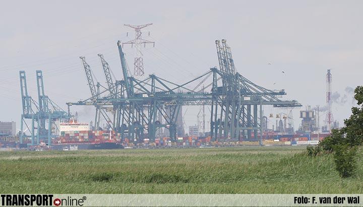 Port of Antwerp start met marktconsultatie voor uitbreiding containerbehandelingscapaciteit