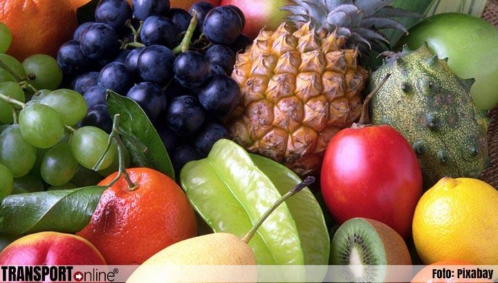 Douane vindt 25 kilo cocaïne tussen lading fruit