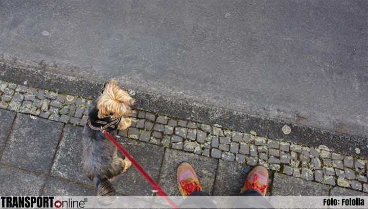Vaccinatiegraad daalt ook onder huisdieren