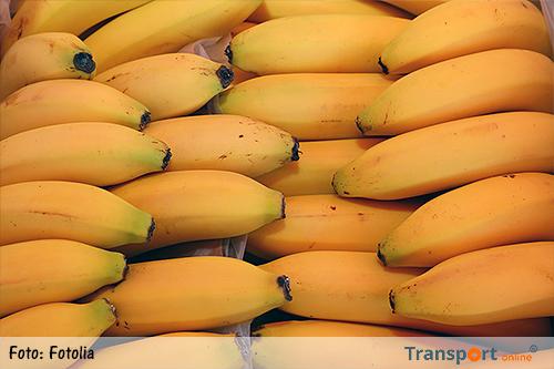 Douane vindt 40 kilo cocaïne tussen lading bananen