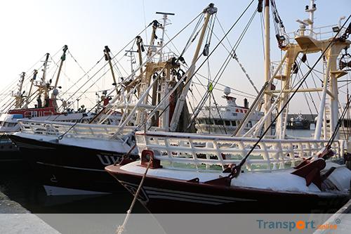 Vissers naar Den Haag voor behoud pulsvisserij