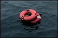 Twee mensen van zinkend schip gehaald