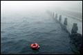Dode man uit water gehaald bij Erasmusbrug